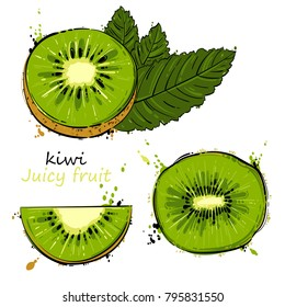Vector abstract illustration with kiwi. An isolated set for your design of postcard, menu, banner, poster, advertisement and other.