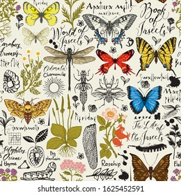 Vector abstract seamless pattern with insects and medicinal herbs in retro style. Colorful butterflies, beetles, various herbs, sketches and inscriptions. Wallpaper, wrapping paper, fabric, background