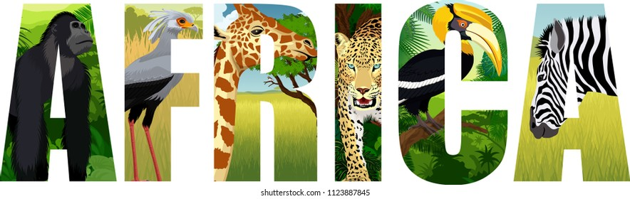 vector Africa illustration with giraffe, gorilla, leopard, secretary-bird, zebra and great hornbill
