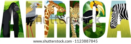 vector Africa illustration with