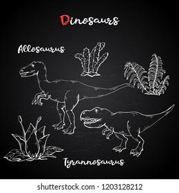 Vector Allosaurus and Tyrannosaurus with plant and stone on chalk blackboard.Jurassic Wildlife.Wild animals dinosaurus. Ancient animal character.Wild creatures of the Jurassic period.