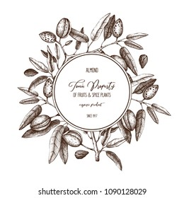 Vector Almond background. Hand drawn  nut tree sketch. Botanical round template. Vintage design with tonic plant drawings.