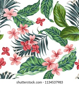 Vector aloha pattern. plumeria, fragipani, ficus and palms. Traditional tropical flowers, seamless vector design.