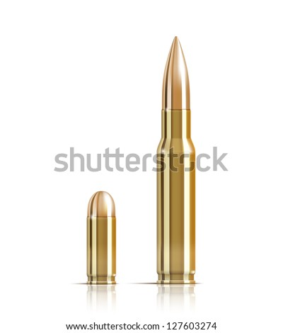 Vector Ammunition bullets on white background