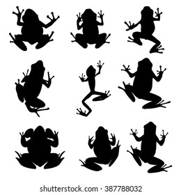 Vector amphibian silhouette on the white background. Frog silhouettes. Collection of vector amphibian silhouette isolated. Vector silhouettes of amphibian, top view