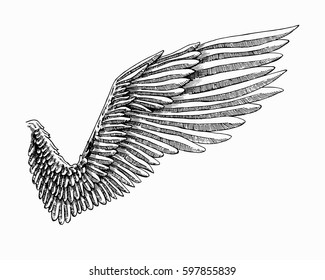 Vector angel wing