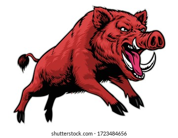 vector of angry aggressive wild boar