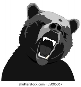vector angry bear illustration on white background
