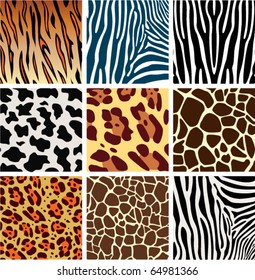 vector animal skin textures of tiger, zebra, giraffe, leopard and cow, animals print background pattern for fashion