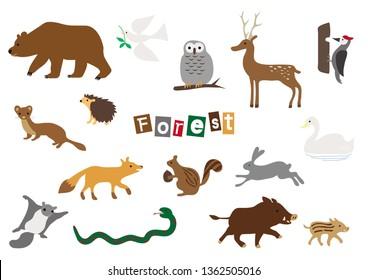 Vector Animals of forest. Many different animals, bear, pigeon, owl, deer, Woodpecker, hedgehog, weasel, fox, Squirrel, rabbit, swan, snake, flying squirrel, wild boar.