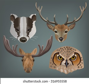 Vector animals portrait set badger, elk, reindeer, owl