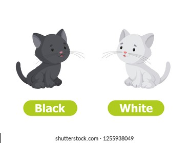 Vector antonyms and opposites. Black and White. Cartoon characters illustration on white background. Card for teaching aid, for a foreign language learning.