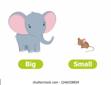 Vector antonyms and opposites. Cartoon characters illustration on white background. Card for children сan be used as a teaching aid for a foreign language learning. Big and Small.