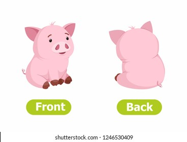 Vector antonyms and opposites. Cartoon characters illustration on white background. Card for children сan be used as a teaching aid for a foreign language learning. Front and Back