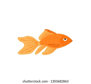 Vector aquarium golden fish silhouette illustration. Colorful cartoon flat aquarium marine pet simple icon for your design