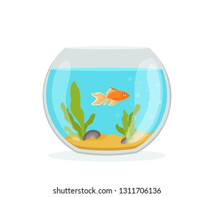 Vector aquarium golden fish silhouette illustration with water, seaweed, shells, sand bubbles. Colorful cartoon flat aquarium marine pet for your design
