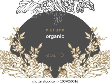 Vector art frame in circle Realistic branch of coffee branch, leaf, bean, flower Botanical draw Floral nature symbol Sketch design organic template, background. Illustration for card, menu, print Text