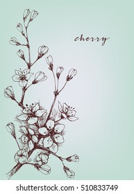 Vector artistic flowers, cherry floral branch