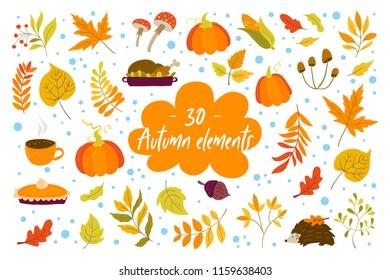 Vector Autumn design elements with oak and maple leaves, aspen, pumpkins,  acorn, corn, hedgehog, turkey, pumpkin pie, mushrooms.