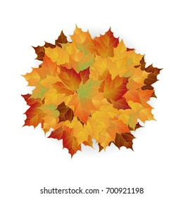 Vector autumn fallen leaves. Leafs element floral color garden art. Pile of leaves. Maple autumn leaves