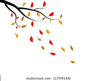 Vector of Autumn leaf
