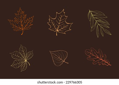 Vector autumn leaves design elements multicolor on dark