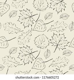 Vector autumn pattern of hand-drawn leaves.  Contoured autumn leaves of maple, poplar, birch, oak, hornbeam on beige background.