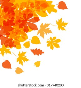 Vector of autumn yellow orange leaves on a white background.