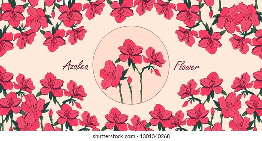 Vector azalea  flower bouquets . Botanical illustration for poster or packaging design