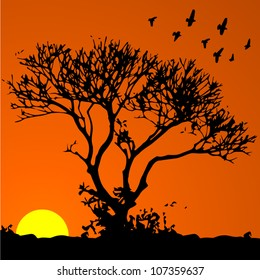 Vector background: african sunset