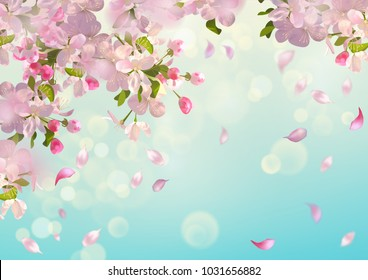 Vector background with Apple blossom. Blooming tree branch in spring and flying petals