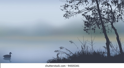 Vector background. Autumn landscape with trees and reeds near the misty lake with a floating duck