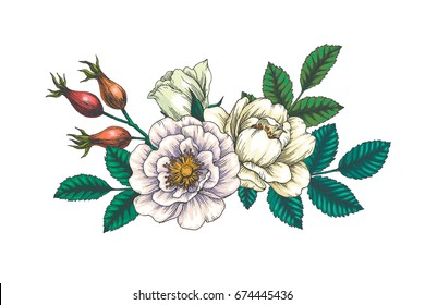 Vector background with beautiful bouquet. Vintage botanical hand drawn illustration of hip rose. Wild briar flowers and leaves. Wedding design. Engraving style. Color floral pattern