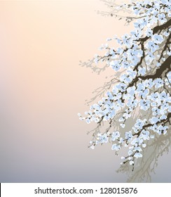 Vector background in Chinese style. Blossoming branches of an old fruit tree against the evening sky