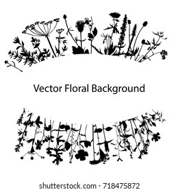 Vector background with drawing wild plants, herbs and flowers, monochrome botanical illustration in vintage style, silhouette floral template