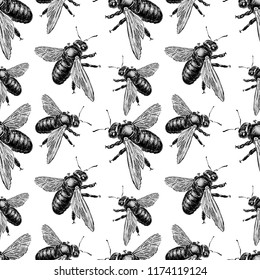 Vector background of drawn bumblebees
