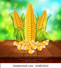 vector background with grains and cobs of corn  on a wooden table on the background of the sky and green foliage