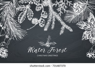 Vector background with hand drawn conifers, holly berries, mistletoe, cones, mountain ash. Holiday decor elements. Vintage Christmas or New Year card design. Winter template on chalkboard