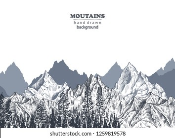 Vector background with hand drawn graphic mountain ranges and pine forest. Nature landscape. Black and white outdoor camping illustration.