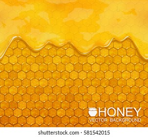Vector background of honeycombs and flowing honey. EPS10