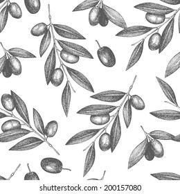 Vector background with  ink hand drawn olive tree twigs isolated on white. Vintage olive background