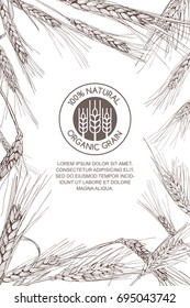 Vector background for label, package. Monochrome sketch illustration of wheat and logo design. Concept for organic flour, harvest and agriculture, grain, cereal products, bakery, healthy food.