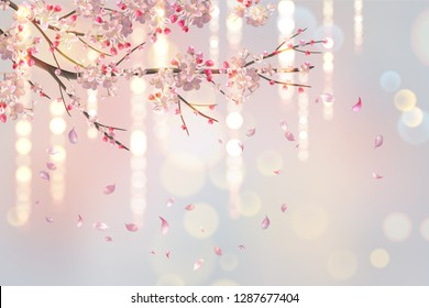 Vector background with plum or cherry blossom. Hanging flowers and lights. Flying petals on spring background