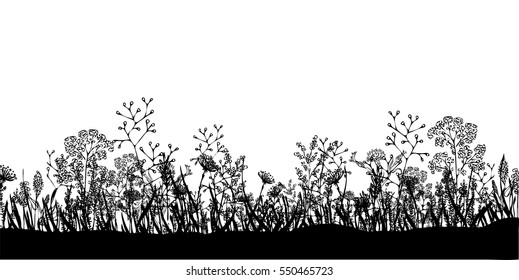 Vector background with silhouettes of hand drawn wildflowers and field herbs. Black on white