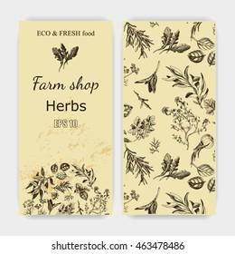 Vector background sketch herbs. Herbs - Bay leaf, dill, thyme, sage, rosemary, Basil, parsley, arugula Card herbs.