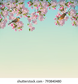 Vector background with spring Apple blossom and birds. Blooming tree branch in springtime