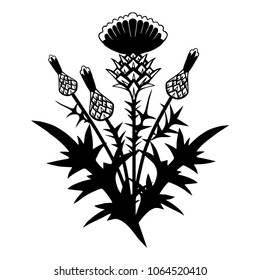Vector background with a thistle bush. Hand-drawn  monochrome drawing.Floral template.