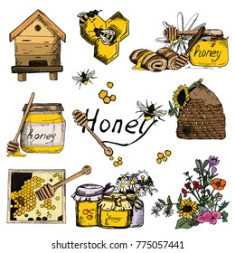 Vector background wallpaper sketch style honey, beekeeping. Color hand drawn set. Template with bee, hive, jar, barrel, flowers, honeycomb