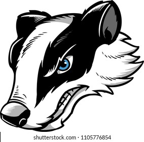 Vector of a badger.
