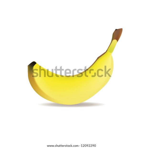 vector of banana